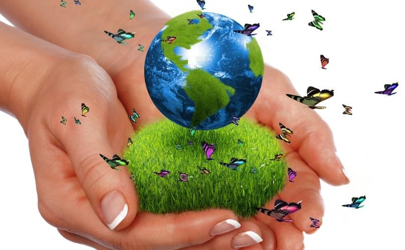 La responsabilidad de las empresas con las buenas prácticasambientales
