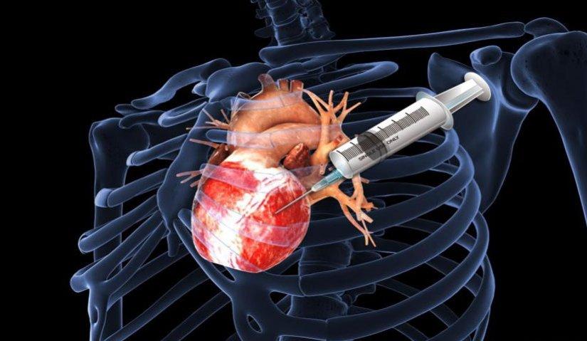 Avanza producción de marcapasos biológicos en corazones de loscerdos