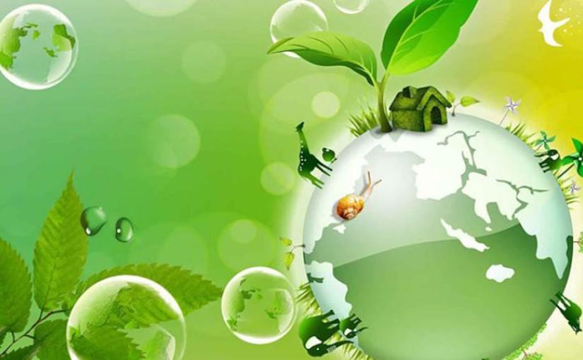 Bioeconomía para mejorar la producción y enfrentar lacrisis